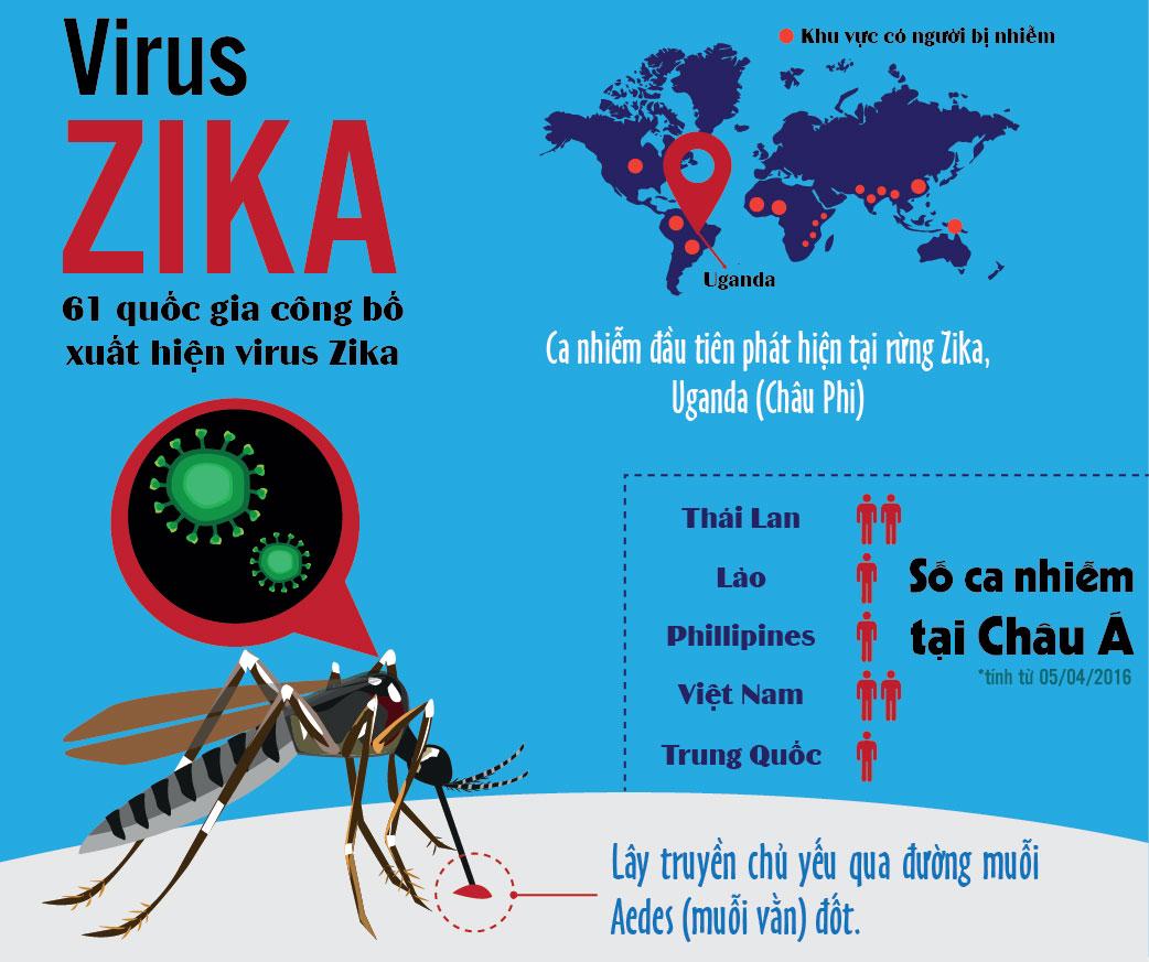 5 Sự Thật Về Virus Zika | Phòng Tránh Bệnh Teo Não Từ Zika Gây Ra