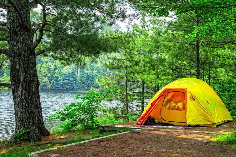 Cách phòng tránh muỗi và côn trùng khi đi cắm trại