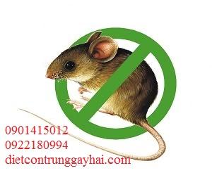 Diệt Chuột Chuyên Nghiệp Tận Gốc Tại TPHCM
