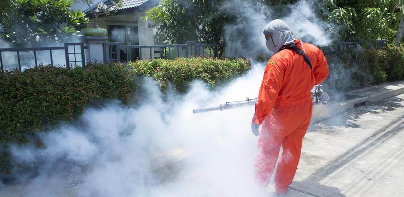 Dịch vụ diệt côn trùng tại nhà
