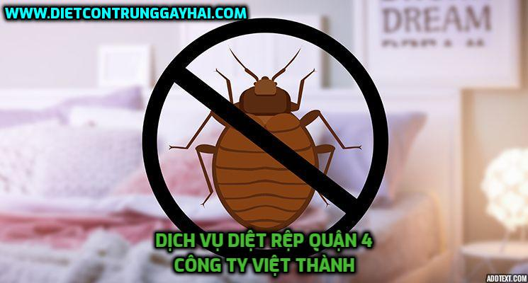 dich-vu-diet-rep