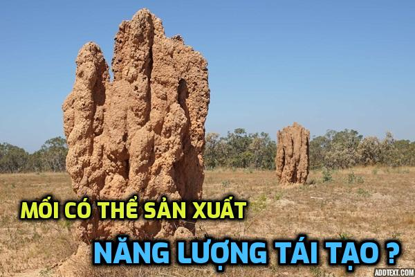 moi-co-the-san-xuat-nang-luong-tai-tao